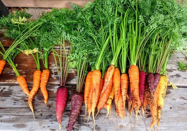 Carrots health benefits