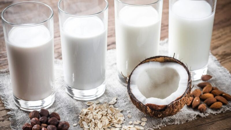 Which is the best Milk for Weightloss?